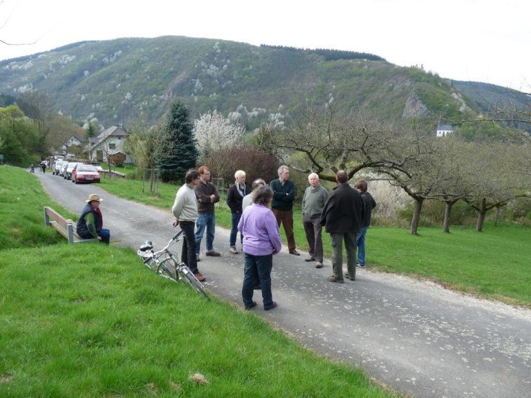 Exkursion in die Streuobstwiesen von Ahrbrück/Ahr